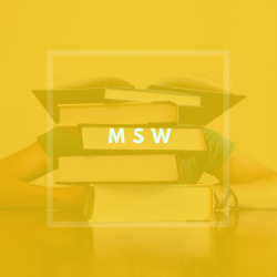 msw icon